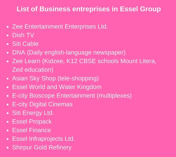 List of Business Organizations founded by Dr Subhash Chandra Essel Group